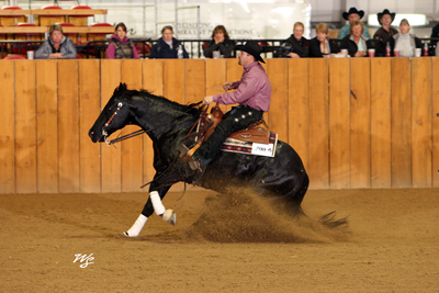 Low Roller Reining Classic NRHA Horse Show