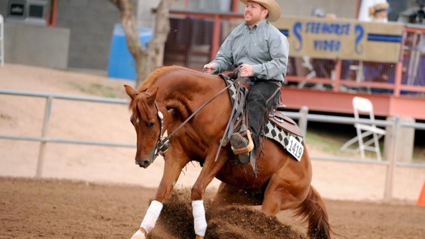 2015 Scottsdale Arabian Horse Show