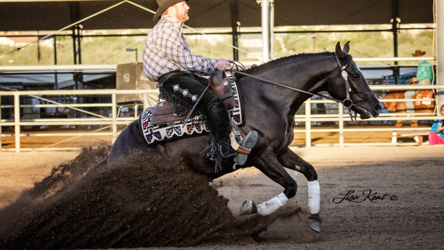 2016 Scottsdale Arabian Horse Show Results