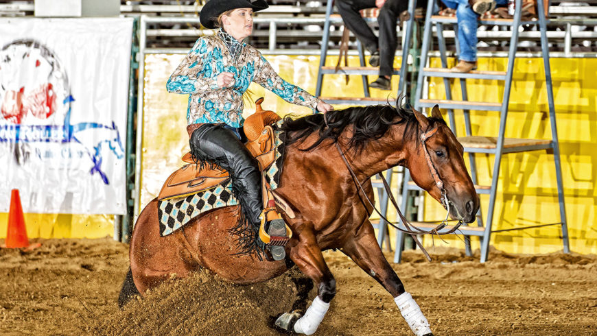 2016 Low Roller Reining Classic Show Results