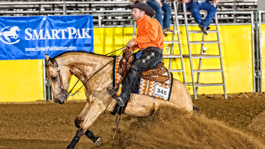 2017 Low Roller Reining Classic Results