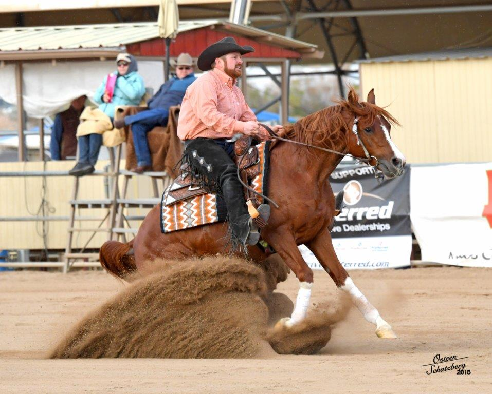 SH Chrome Forty Five - Arabian Reining Stallion