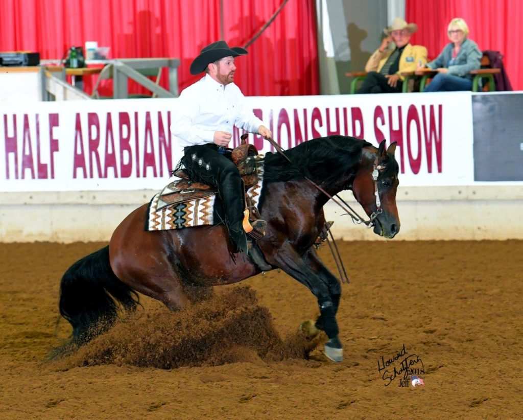 PA Marco at Arabian U.S. Nationals in Arabian Reining